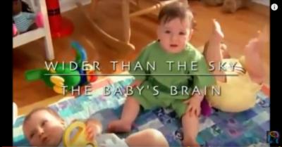 Geheimen van het babybrein